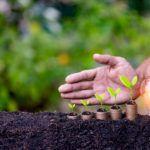 Agroenergia nowa forma dofinansowania